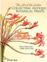 Collecting Antique Botanical Prints